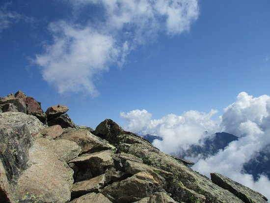 Rifugio Vioz - Day Excursions: si sale
