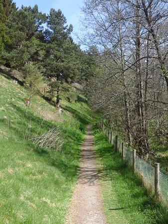 Aviemore, UK: Speyside Way Trail
