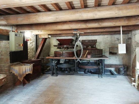 Sassoferrato, Italia: Il fascino dell'acqua