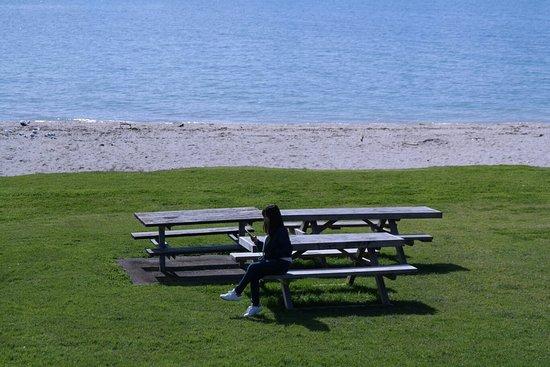 Maraetai Bay, New Zealand: 🌬