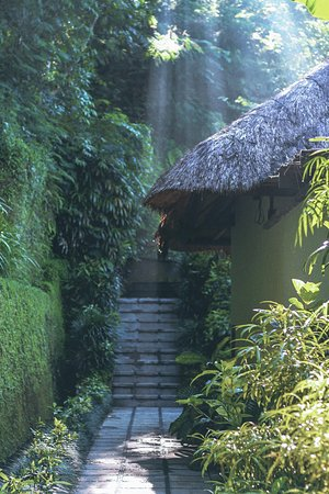 Hanging Gardens of Bali: Outside the Villa