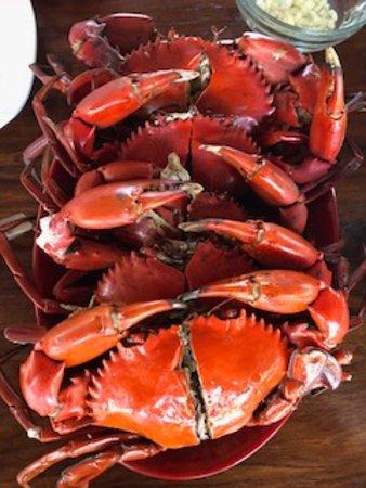 Busuanga Town, Филиппины: Steamed mud crabs