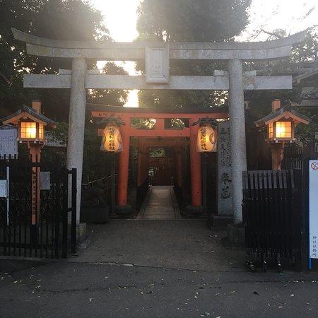 Ueno: photo0.jpg