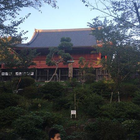 Ueno: photo1.jpg