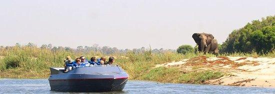 Livingstone, Zambia: Jetboat trip on the Zambezi