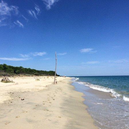 Ghisonaccia, ฝรั่งเศส: La spiaggia