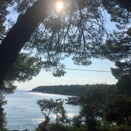 Palit, Croatia: Wunderschöne Bucht für FKK, schattige Plätze durch Pinien und andere Bäume vorhanden. Restaurant