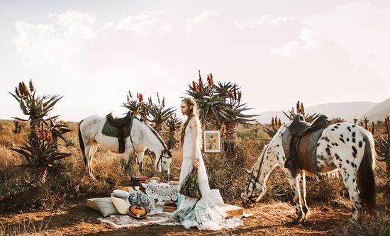 Holistic Horse Paddock Paradise
