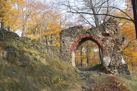 Nowy Dwor Castle Ruins