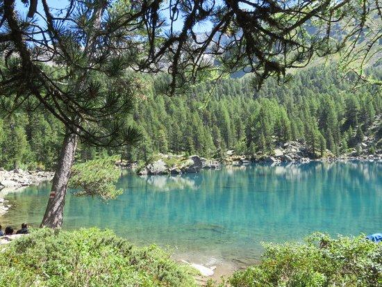 Il lago di Saoseo