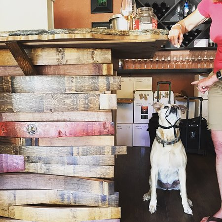 Idle Hour Tasting Room: Dogs are always welcome in our tasting room!