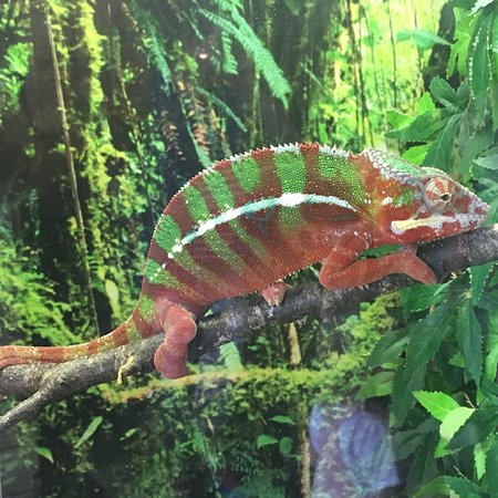Tropical World: photo2.jpg