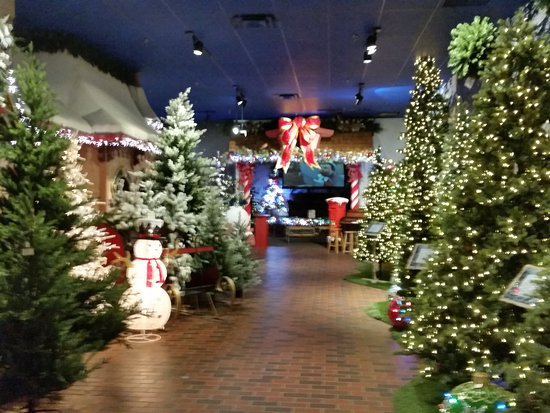 incredible christmas place courtyard and train display picture of