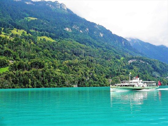 gorgeous water ... - ブリエン...