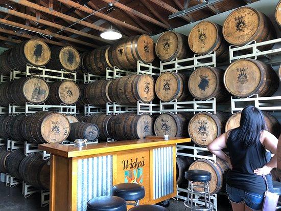 Wicked Dolphin Rum Distillery: Fun Tour!