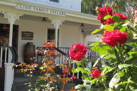 Enjoy a Morning in Wine Country...