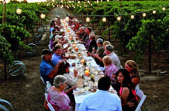 Jantar nos vinhedos de Chianti de...