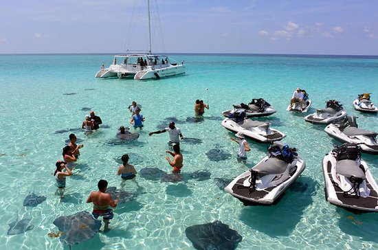 Tour de Stingray City e Starfish...