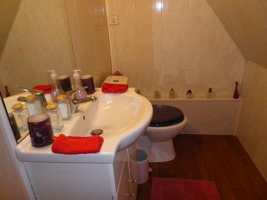 Pourville-sur-Mer, Prancis: Même SDB toilette idem rester courbé