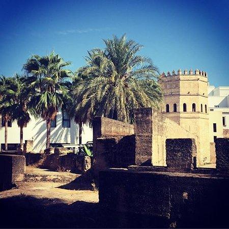 Seville Touring