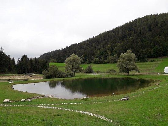 Ruffre-Mendola, Italy: 20180907_113340_large.jpg