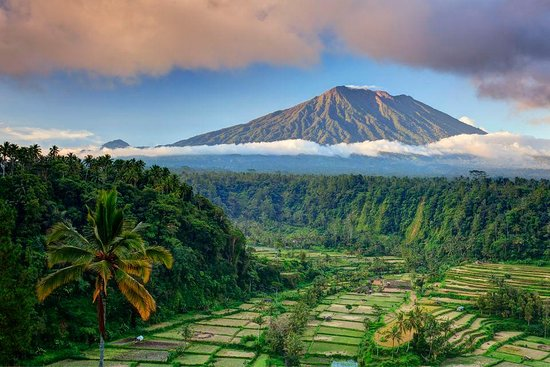 Bali and Car - Rent a car with driver