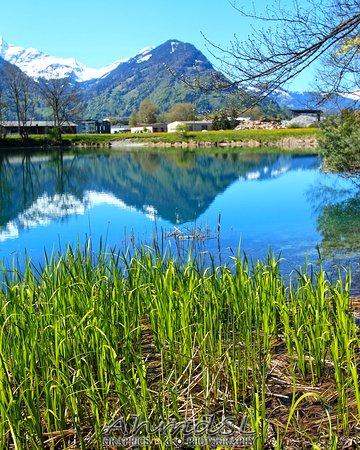 Best of Switzerland Tours 사진