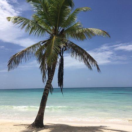 Isla Saona, Доминикана: photo1.jpg