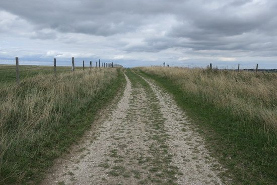 Uffington, UK: The nearby Ridgeway. Reputedly Europe's oldest surviving road.