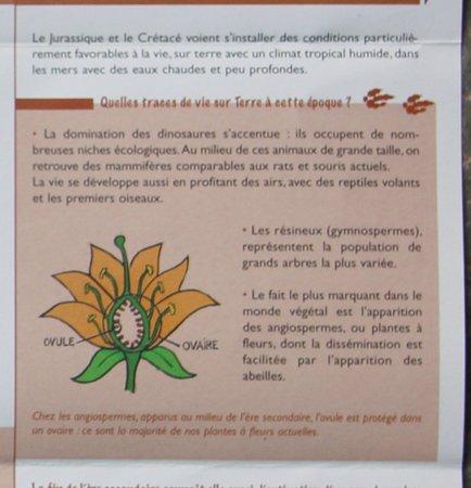 La Roche-Vineuse, Francja: La carrière de Rampon à Verzé