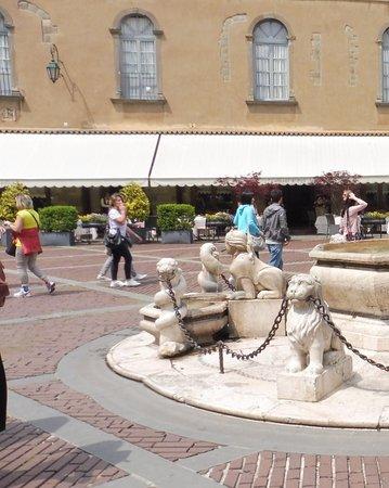 Piazza Vecchia: Do not tease the lions !