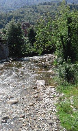 River Cares: Cares
