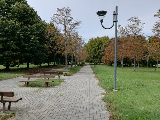 Parco del Gelso: IMG_20180907_140900_large.jpg