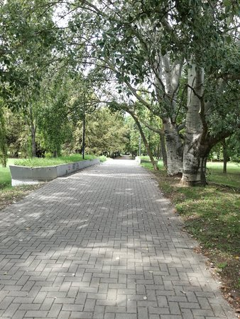 Parco del Gelso: IMG_20180907_141420_large.jpg