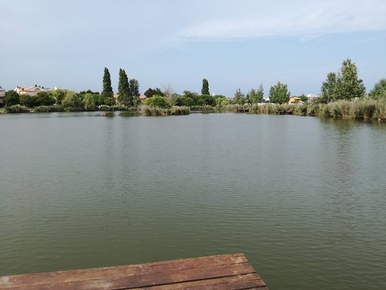 Parco del Gelso: IMG_20180907_142323_large.jpg