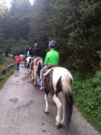 Charlotte Horse Riding: nei dintorni del maneggio