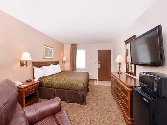 Geneva, AL : Guest room