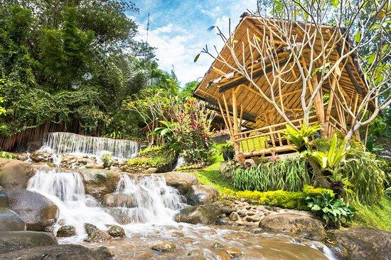 The 10 Best Restaurants In Bogor Updated January 2020