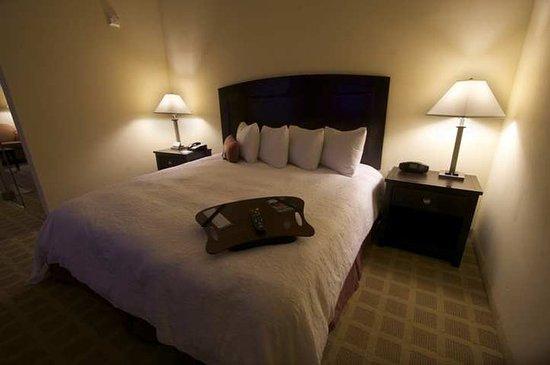 Hampton Inn & Suites Port Arthur
