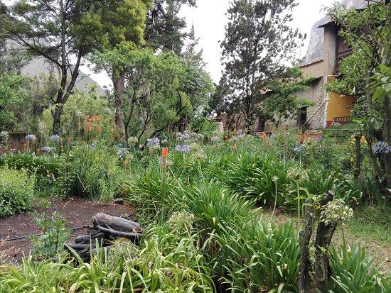 Hospedaje Ecologico Hacienda La Florida