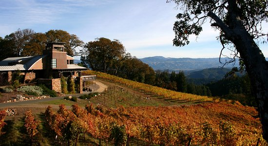 Healdsburg, CA: Fall at the Estate