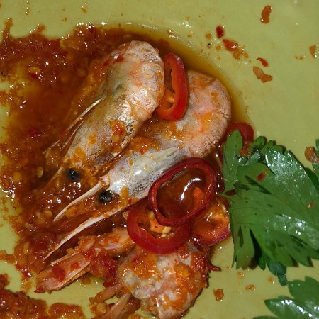 Tapas Bar Celona: Luckily I only ordered one dish: this is what Gambas al Ajillo look like.... a Spaniard (as I am