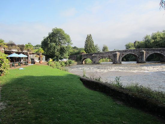 Bickleigh, UK: From the garden