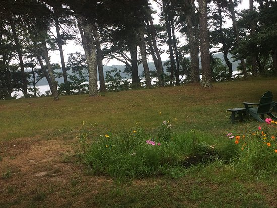 Gull Cottage Bed & Breakfast: view from the great reading chairs in the yard of the main house