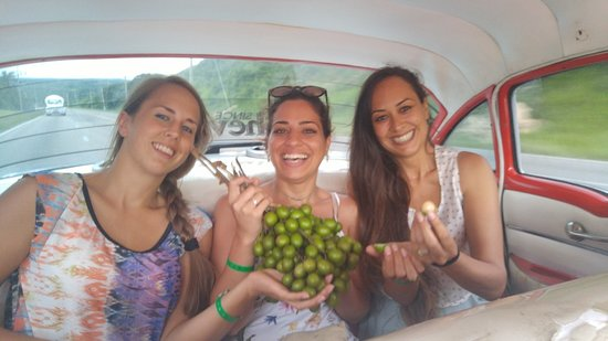 Friendly Cuba Voyage