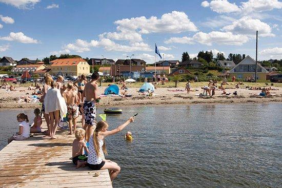 Hvalpsund, Danemark : Beach