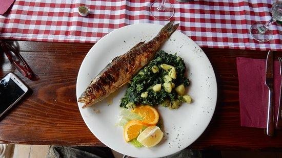 Pakostane, Kroatië: Branzino con bietta e patate