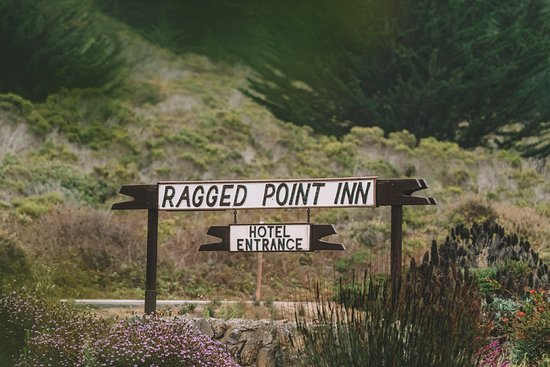 Ragged Point Inn and Resort: Minivaca2018 151_large.jpg