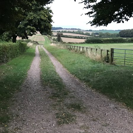 Coombe Bissett, UK: photo2.jpg