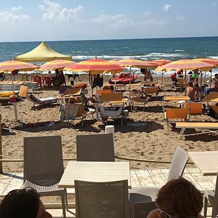 Dog Beach : photo0.jpg